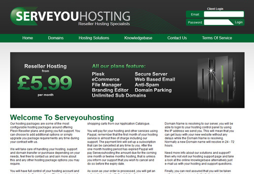 Serve You Hosting